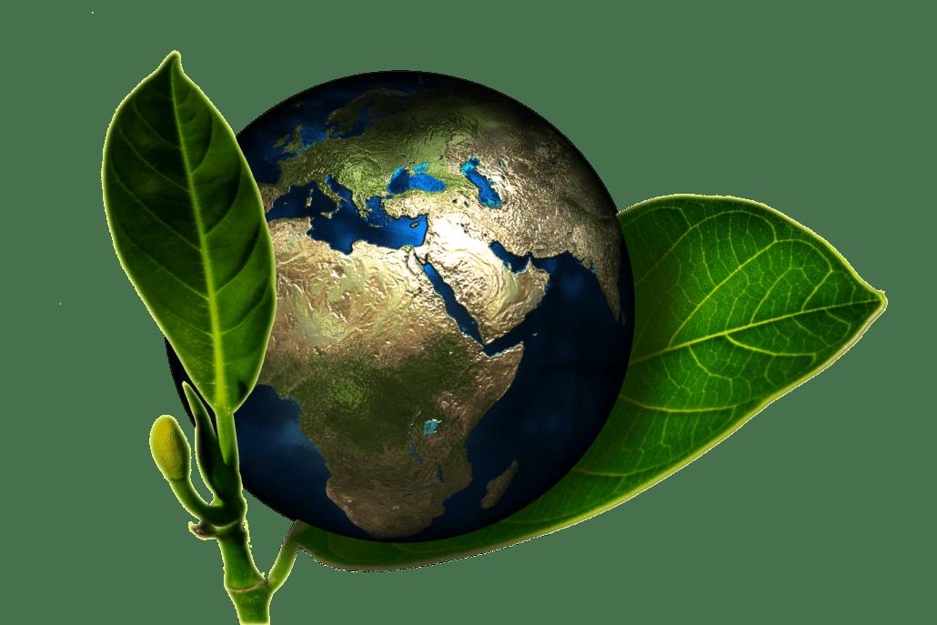 Sariba_ta vare på miljøet