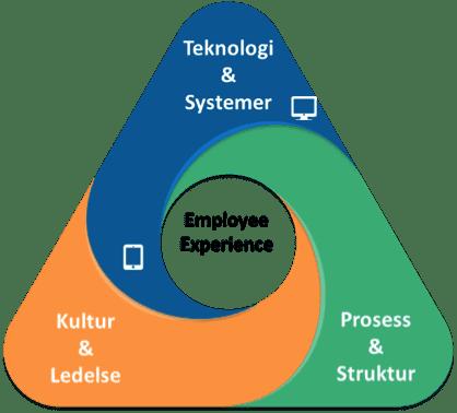 Sariba HR Transformasjon - et rammeverk